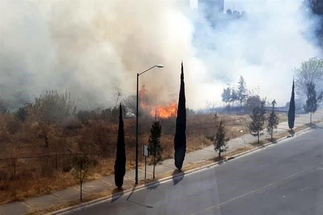 Resultado de imagen para se incendia pastizal en alvaro obregon