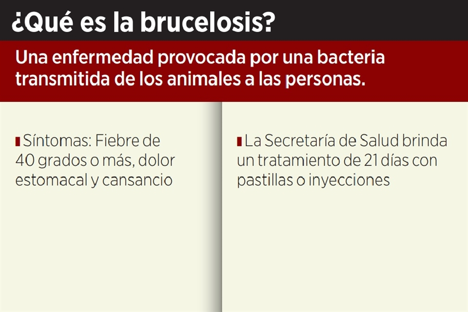 Alertan Por Aumento De Casos De Brucelosis En Mier Y Noriega